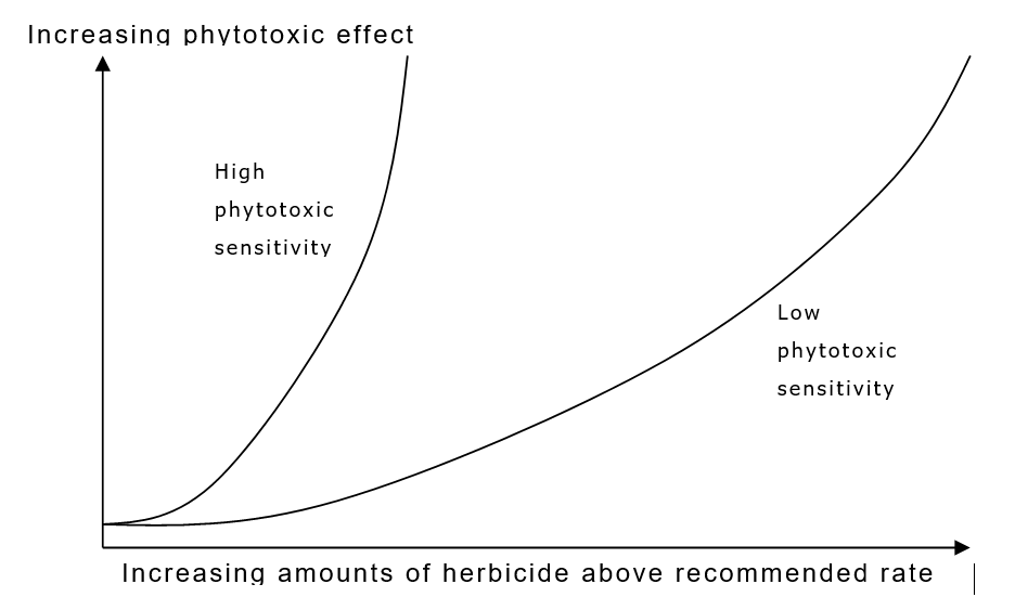 herbicide toxicity effect overdose