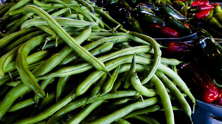 how to grow fresh soil grown grean beans