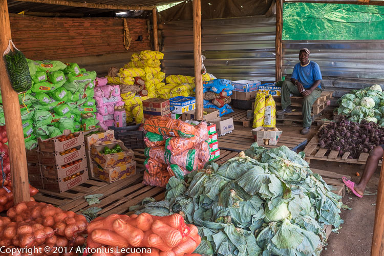 vegetable marketing small scale farmers south africa brits