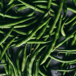 green bean fertilizer micro nutrient requirements