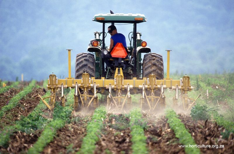 cultivation farming weed control tractor commercial