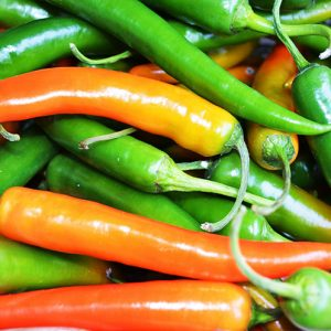 chillies insect control management damage africa